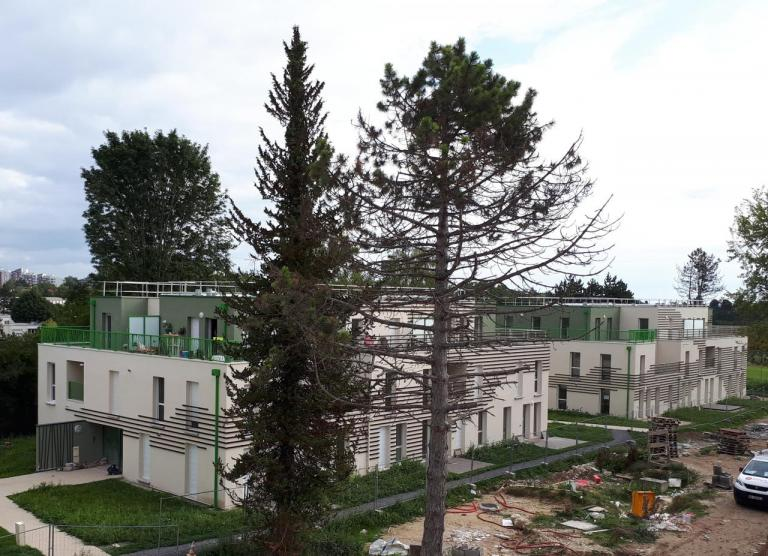 Construction de 81 logements